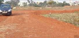 AIIMS hospital and doon school near plot