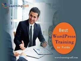 Best WordPress Training in Noida - LearningCaff