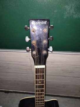 Giannini top Brand     Semi acoustic guitar