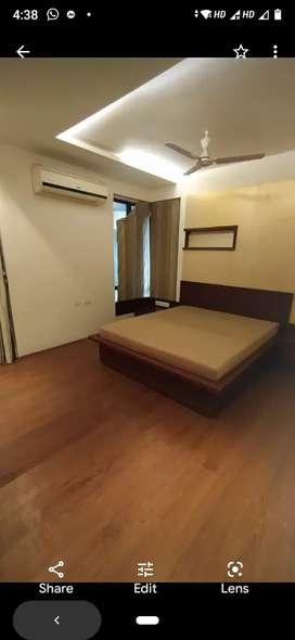 3 bhk fully furnished flat- alkapuri