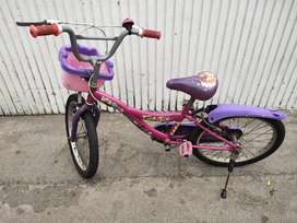 Hero Disney 16T Princess Junior Cycle with Carrier, Girl's(CapriPink)