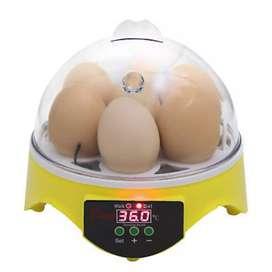 Mesin Penetas Tetas Telur Mini Ayam Burung Bebek Puyuh