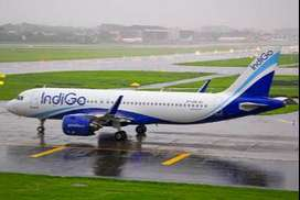 Urgent Hiring from indigo airlines for  Helper, Loader, Security Super