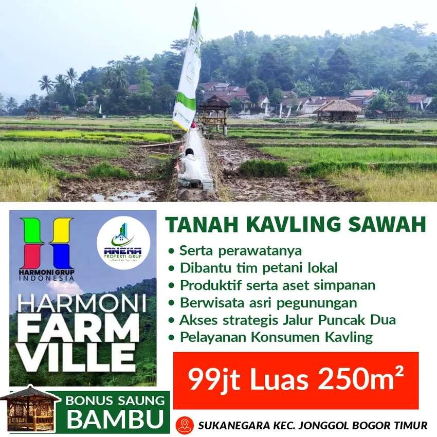 Tanah Sawah Kavling Harmoni Farm Ville Bogor Jonggol