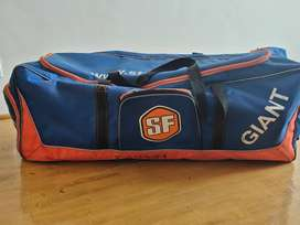 Cricket kit and bag
