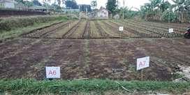 ASRI Kavling tanah di Cihanjuang Gegerkalong Parongpong Utara