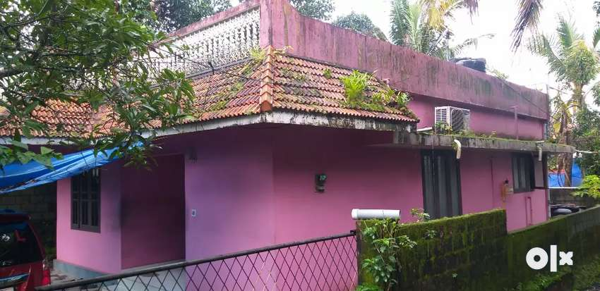 5 cent 3 bedroom Kakkanad Kangarappady good Residential area 0