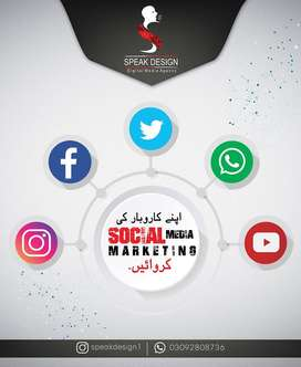 Graphic Designing and Web Developing Services Affordable prices