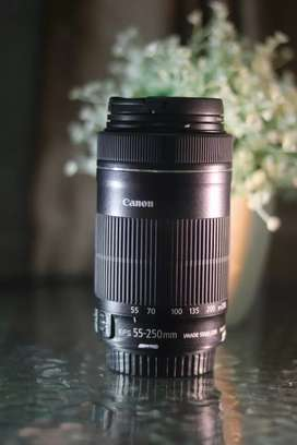 Canon EF S 55-250mm is STM