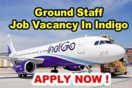 Urgent hiring  helper, loder, helper, all vacancies on airport job