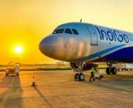 Vacancies are available in Indigo airlines intrested Candidate  apply