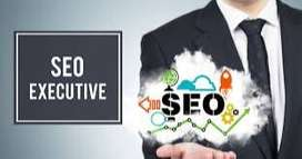 """We need freshers as """"SEO Interns""""(6k Stipend per month)"""