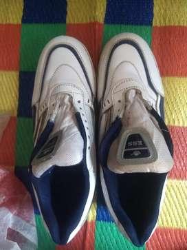 Cricket season shoes