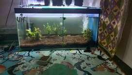 Aquarium 80*40*40 fullset