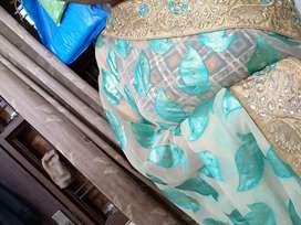 net saree  perfect colour