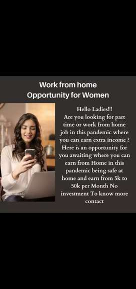 Work from home job for women's