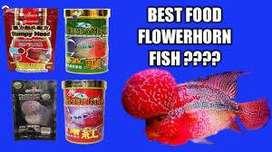 Flowerhorn food for Sale