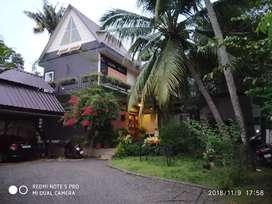 11.5 Cent Land and house Sale in Kacheripadi Ayyappankavu.
