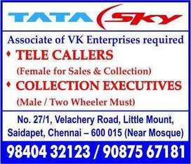 tata sky sales telecallers