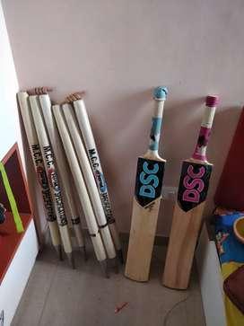 Cricket bats and stumps