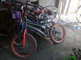 Wimcycle uk24 trendi