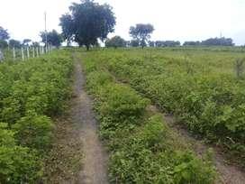 Plot in Pardi Khandala walni katol road