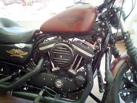 Harley Davidson Iron 883 under warranty, Single Owner, Special Number