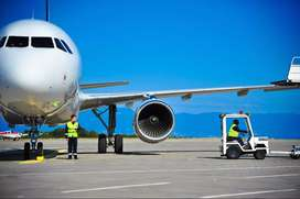 NEED SOME FRESHERS IN AIRLINES