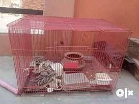 Birds cage (pinjra)