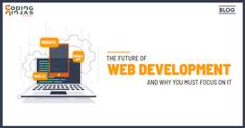 Website Developer Jobs