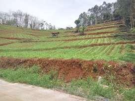 Tanah murah dekat jalan Raya ciwidey cocok untuk kawasan wisata