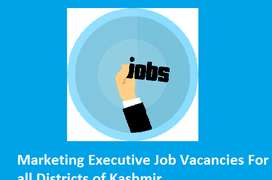 Huge Vacancy For Marketing Executive