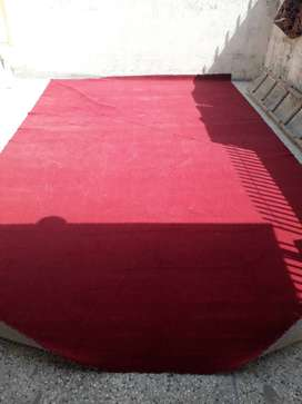 Maroon carpet for sale