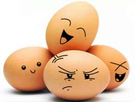 The MOST TRULY NATURAL DESI EGGS in whole PAKISTAN.