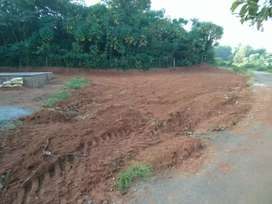 1.25 lakhs per cent plots for sale in kottekad palakkad