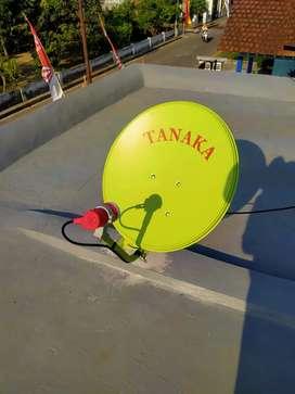 Jambangan ini baru beda antena parabola digital bebas iuran bulanan