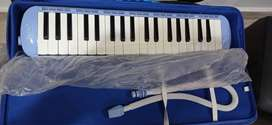 Irin melodica with hard case