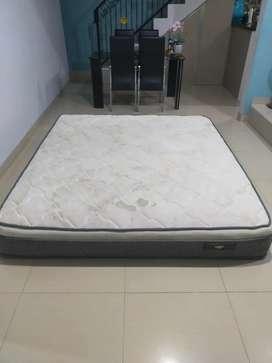 Spring Bed No 1