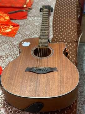 Spectrum Guitar