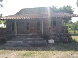 Di jual Rumah dengan luas tanah 590m2 Dan pemandangan asri pegunungan