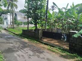 12.50 Residential plot, (PURAYIDAM)at Nedumthode(2.5 KM from Perumbavo