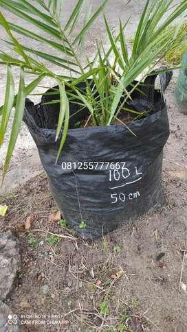 planterbag / planter pot plastik tebal & awet untuk tanam buah / bunga