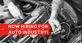 Bulk Opening in Automobile manufacturing company for various position