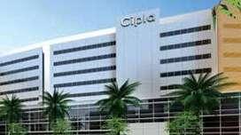 huge vacancies in cipla pharmacy company ltd. apply now.