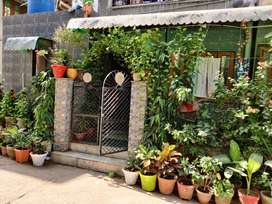 3 BHK MIG. RESALE  IN SECTER 23 ROHINI . NEAR HERITAGE SCHOOL