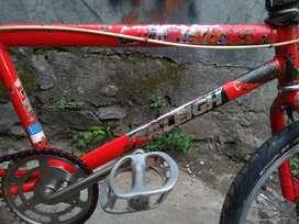 BMX Raleigh R20
