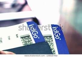 Indigo Airline Company Ground staff job Airline - work apply now