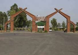 ONE KANAL LOW BUDGET PLOT AVAILABLE FOR SALE