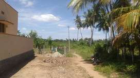 Land for sale in pothanur 2.85 therku street850000