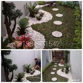 Pasang rumput gajah mini murah terima buat taman dan jual tanaman hias
